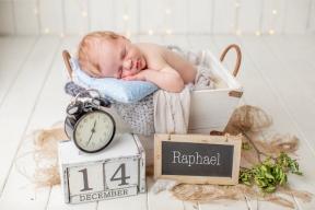 Raphael1b